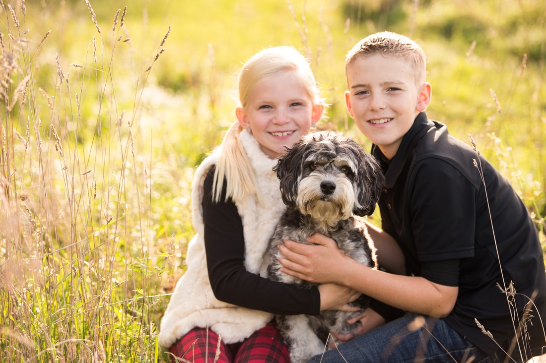 fall family session siblings portrait with family dog