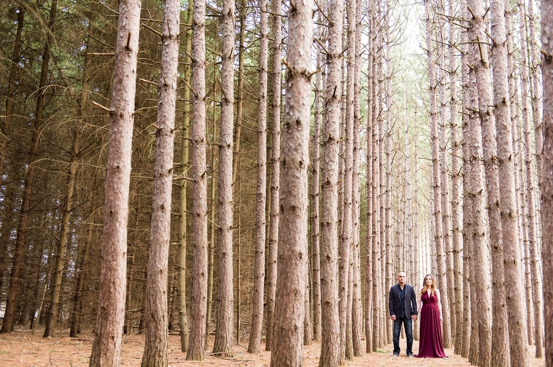 Kortright Engagement Session, The Handmade Bride, Arroh & Bow Infinity Gown, woodland theme